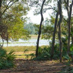 Orlando Area Ranch Sale 2/10