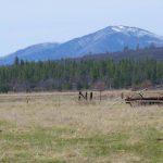Black Ranch Road 10 acres, California
