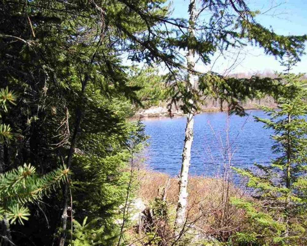 Secluded Dommer Creek MLS 1111834, Michigan