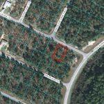 8 MALAUKA LN : OCKLAWAHA, FL 32179  MARION COUNTY, FLORIDA